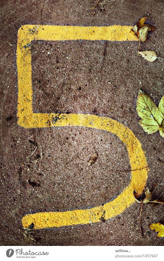 verfünftiges | zifferblätter Blatt gelb braun Erde dreckig Ziffern & Zahlen 5 herbstlich Termin & Datum welk Jubiläum Mai