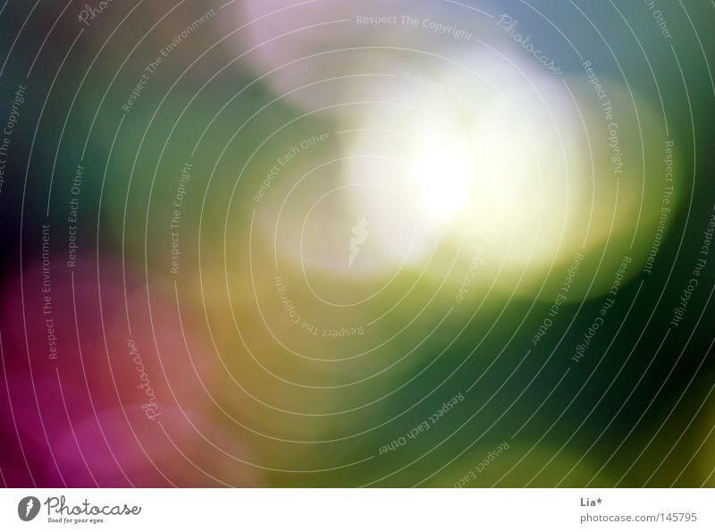 points Sommer Freude Farbe Herbst Farbstoff träumen Hintergrundbild Kreis Punkt Textfreiraum Fleck blenden Linse unklar Lichtpunkt Lichtstrahl