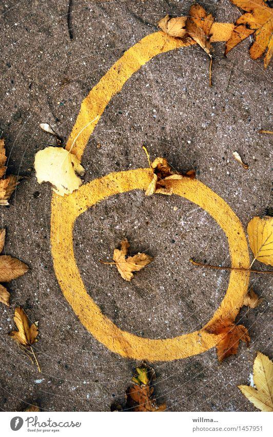 sechs, windig. Herbst Ziffern & Zahlen 6 braun gelb Zifferblatt herbstlich Blatt Termin & Datum Jubiläum Herbstlaub Boden Farbfoto Vogelperspektive