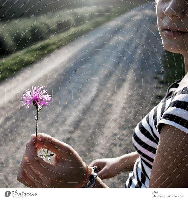 Die kleinen Dinge des Lebens Frau Natur Jugendliche Pflanze grün schön Sommer weiß Hand Blume Erholung Landschaft Einsamkeit ruhig Freude Ferne