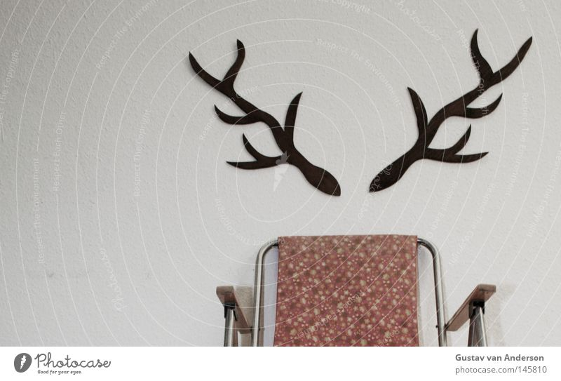 Hirschschaden Natur weiß grün Baum Tier Holz Wildtier frei Platz Dekoration & Verzierung Stuhl Jagd Tapete Camping Horn Sitzgelegenheit