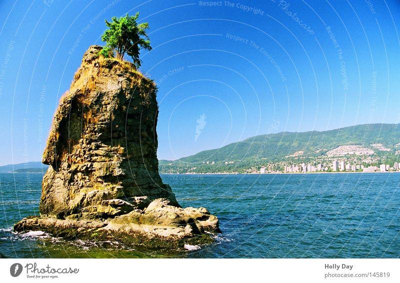 Siwash Rock Wasser Baum Meer grün blau Einsamkeit oben lustig klein Felsen Insel obskur Kanada skurril bizarr