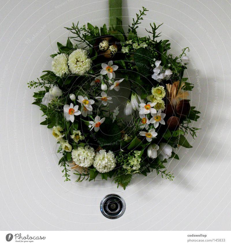 begrüßungskranz Kranz Blumenhändler Loch Türspion Dekoration & Verzierung gemütlich Flur Haushalt peephole wreath door decoration häuslich spyhole
