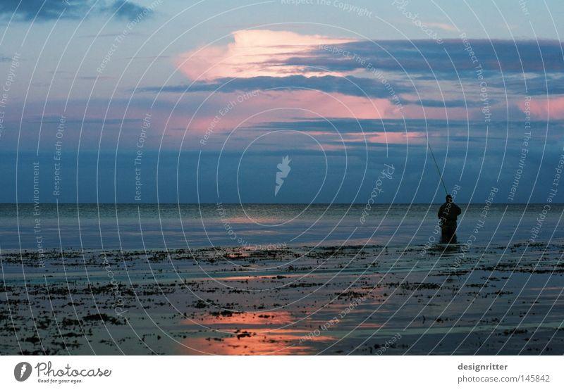Börsenmaklerfeierabend Meer Ostsee See Wasser Wellen Bewegung Zeit ruhig Frieden Erholung Einsamkeit frei Freiheit Ferne Horizont horizontal blau Dämmerung