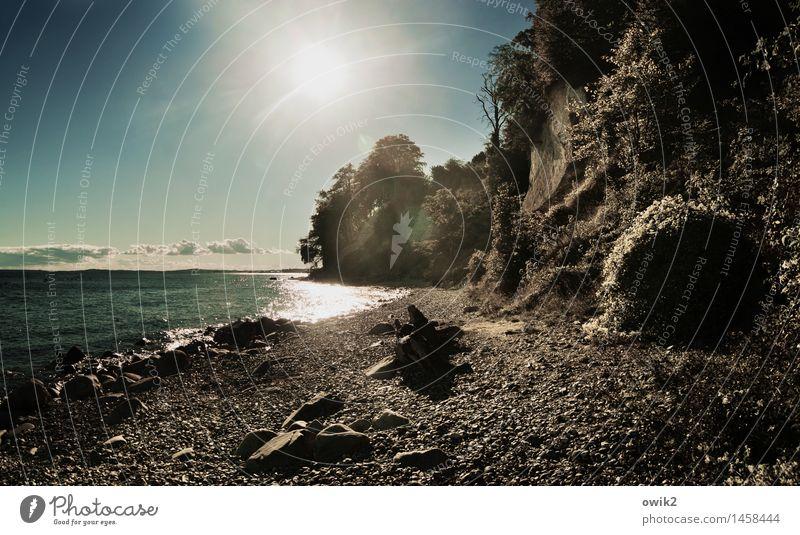 Flutlicht Umwelt Natur Landschaft Pflanze Wasser Himmel Wolken Horizont Klima Schönes Wetter Baum Sträucher Küste Ostsee Klippe leuchten gigantisch glänzend