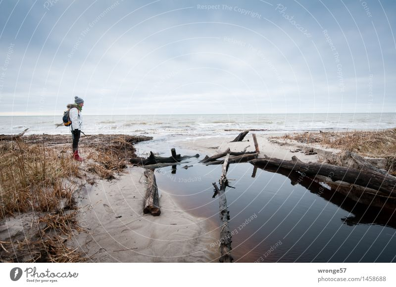 Wie nun weiter? Mensch Frau Himmel Ferien & Urlaub & Reisen blau weiß Meer Wolken Winter Strand Erwachsene feminin Küste grau braun Wellen