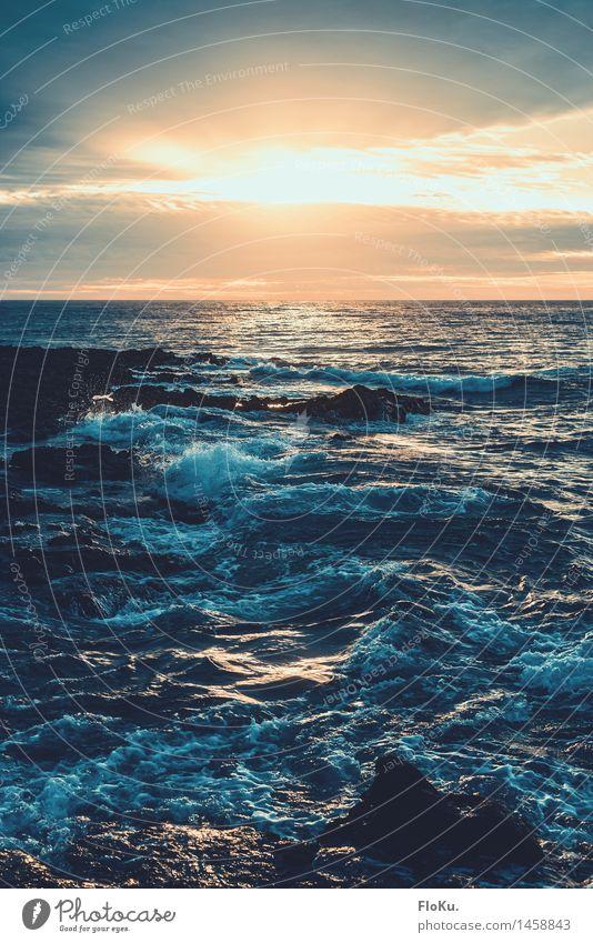 aufwachen am Meer Ferien & Urlaub & Reisen Abenteuer Ferne Freiheit Sommerurlaub Sonne Wellen Natur Landschaft Urelemente Wasser Himmel Wolken Sonnenaufgang