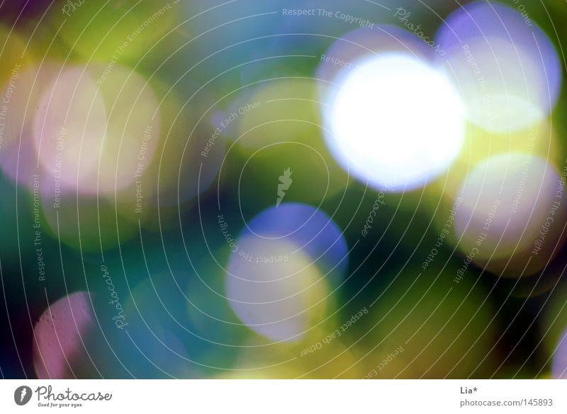 points III Licht Fleck gefleckt Sonne Alkoholisiert mehrfarbig Farbe Farbstoff Hintergrundbild Scheinwerfer Lightshow abstrakt träumen Strukturen & Formen Kreis