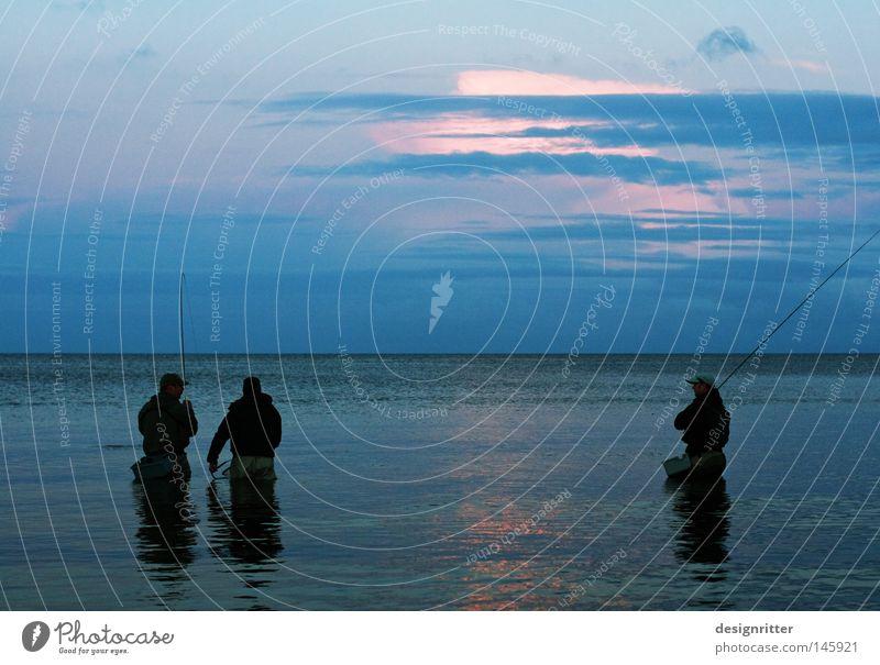 Meeting Meer Ostsee See Wasser Wellen Bewegung Zeit ruhig Frieden Erholung Einsamkeit frei Freiheit Ferne Horizont horizontal blau Dämmerung Abend Angeln Angler