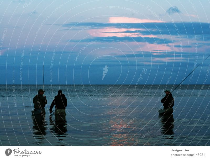 Meeting Wasser Meer blau Freude Ferien & Urlaub & Reisen ruhig Einsamkeit Ferne Erholung sprechen Arbeit & Erwerbstätigkeit Bewegung Freiheit Menschengruppe See