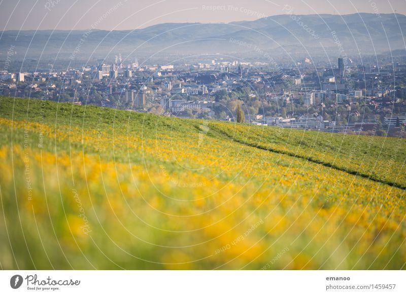 Spring in the City Natur Ferien & Urlaub & Reisen Stadt grün Blume Landschaft Haus Berge u. Gebirge gelb Frühling Gras Freiheit Tourismus Wetter wandern