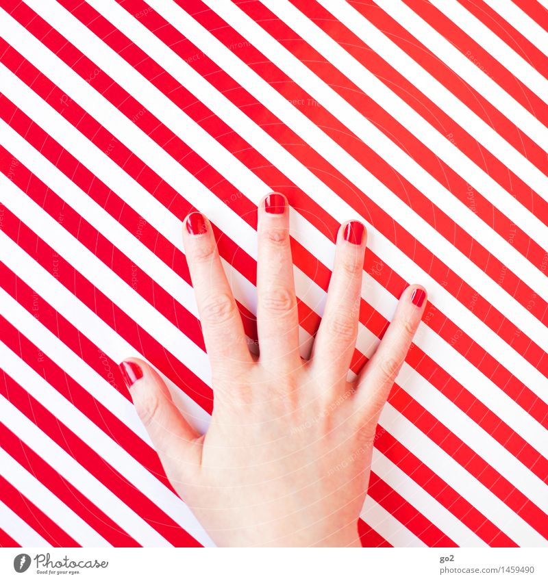 Rot Stil schön Körperpflege Maniküre Nagellack Mensch feminin Frau Erwachsene Hand Finger 1 Linie Streifen ästhetisch außergewöhnlich einzigartig rot weiß