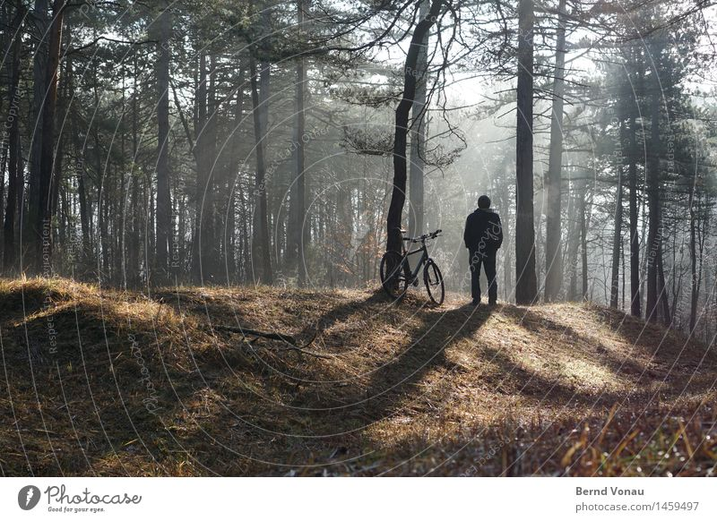 kurze unterbrechung Mensch maskulin Mann Erwachsene 1 45-60 Jahre Blick Erholung stehen Pause Waldboden Gras Mountainbike Sehnsucht genießen einzeln Schatten