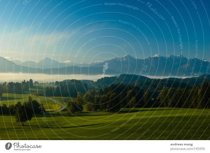 A New Day Begins Gras Baum Sonnenaufgang Allgäu Morgen Wiese Bergkette Hügel Wolkendecke Nebel Wald Berge u. Gebirge Himmel Straße Morgendämmerung Natur Tal