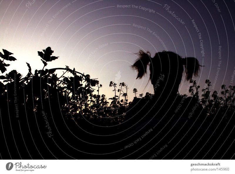 Versteckspiel Frau Kind Himmel Natur Jugendliche blau Sommer Mädchen Blume Freude Farbe schwarz Landschaft dunkel Wiese Spielen
