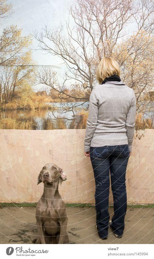 Ansichtssache Frau Natur schön Hund Fotografie Perspektive Jeanshose Bild beobachten Tiergesicht Dinge entdecken Gemälde Wachsamkeit Museum Publikum