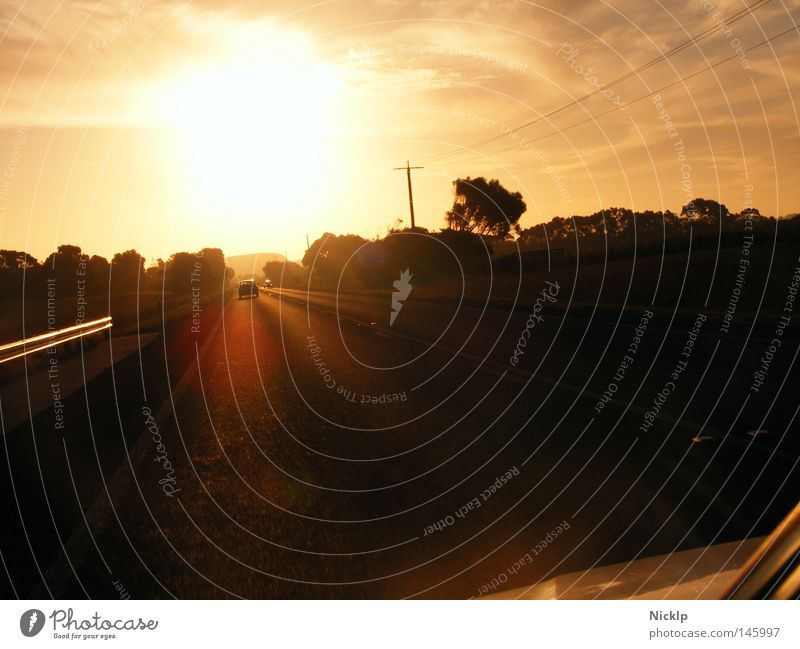 Auf zum Fluchtpunkt, in den Sonnenuntergang hinein Freude Ausflug Ferne Freiheit Himmel Wolken Stern Baum Sträucher Verkehrswege Straße Autobahn PKW Bewegung