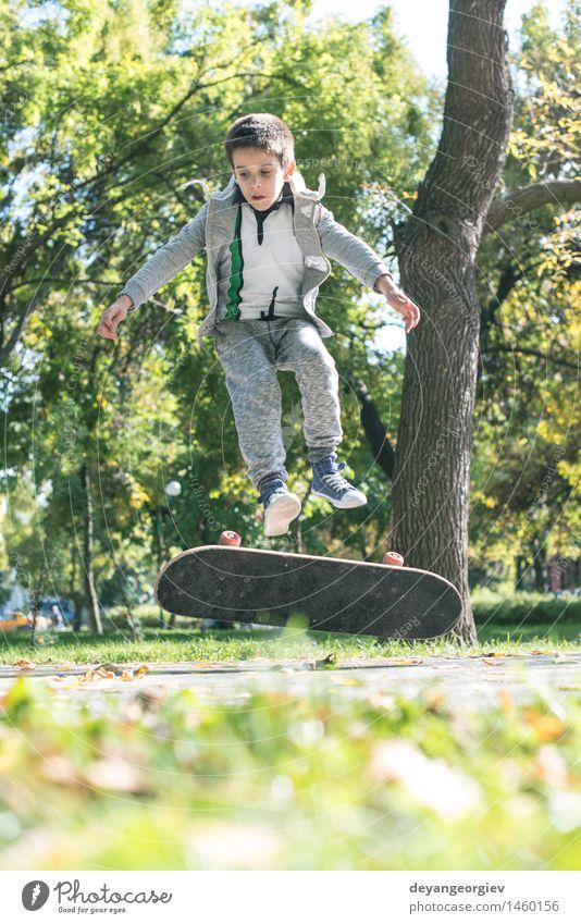 Junge mit Skateboard im Park Lifestyle Freude Erholung Freizeit & Hobby Sommer Sport Kind Mensch Mann Erwachsene Herbst Blatt Straße Coolness Skateboarding jung
