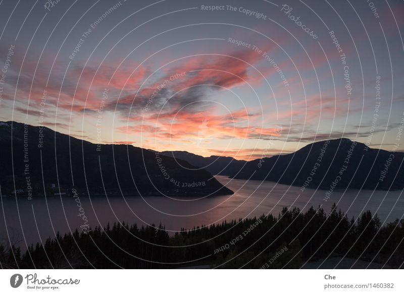 Abschiedsstimmung Natur Wasser Himmel Wolken Sommer Schönes Wetter Berge u. Gebirge Küste Fjord Abenteuer Glück Idylle Lebensfreude Leichtigkeit Stimmung