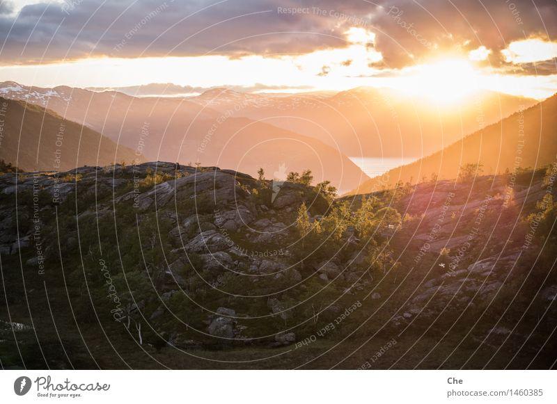 Auf Augenhöhe Landschaft Hügel Berge u. Gebirge Fjord ruhig träumen Sommersonnenwende Baum Wärme orange leuchten Beleuchtung Idylle Abenddämmerung glänzend