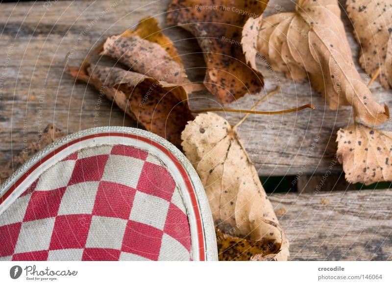 Herbstlaub Blatt Lieferwagen kariert Holz Bank stehen rot mehrfarbig weiß braun Makroaufnahme Nahaufnahme schön hernst herbstlich