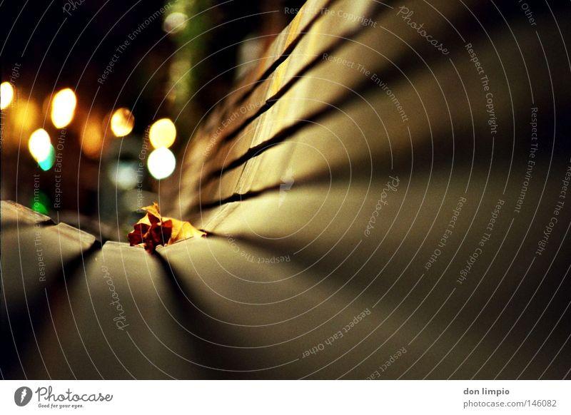 magic Blatt Licht Nacht Bank Holzbrett Strukturen & Formen Linie Herbst Tod liegen rund Flussufer Promenade Dublin Republik Irland Unschärfe Tiefenschärfe