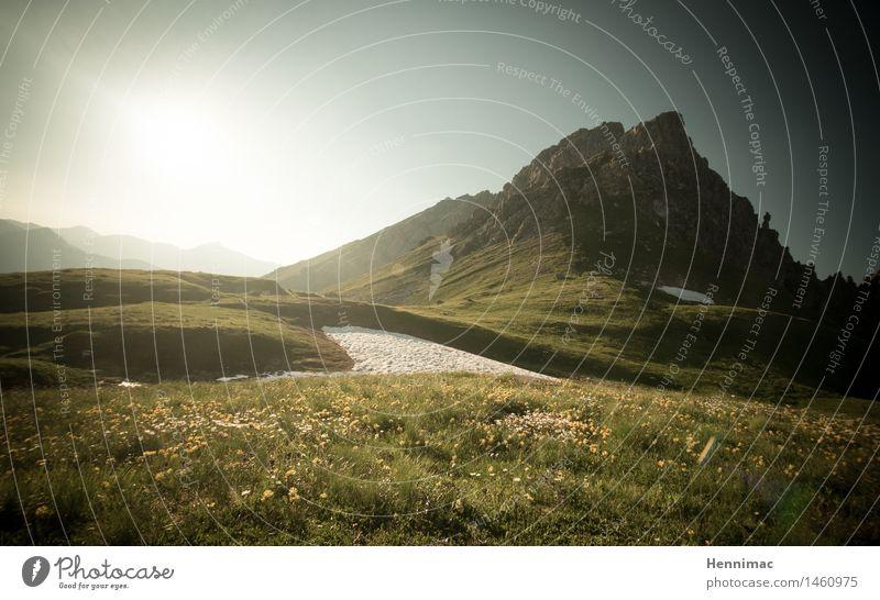 Heidi. Himmel Natur Ferien & Urlaub & Reisen grün Sommer Sonne Einsamkeit Landschaft ruhig Ferne Berge u. Gebirge Gras Schnee Freiheit Stimmung Felsen