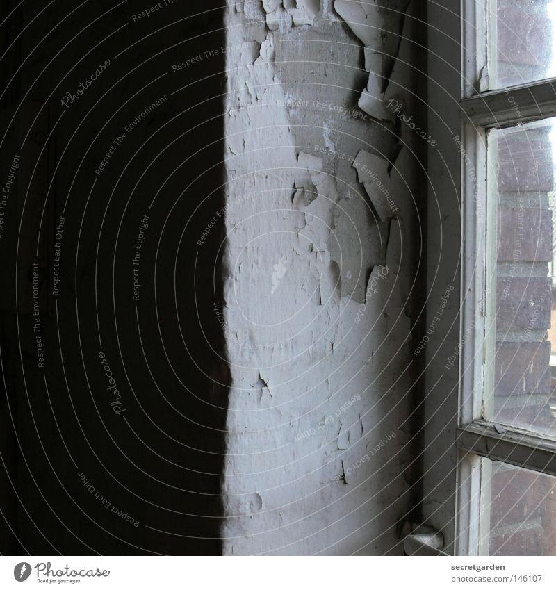 [HH08.3] die vertikalisation der struktualisierung. Raum Fenster Verfall verlieren Putz Reinigen Fensterrahmen Holz Luft antik Fabrik Leitersprosse Licht dunkel