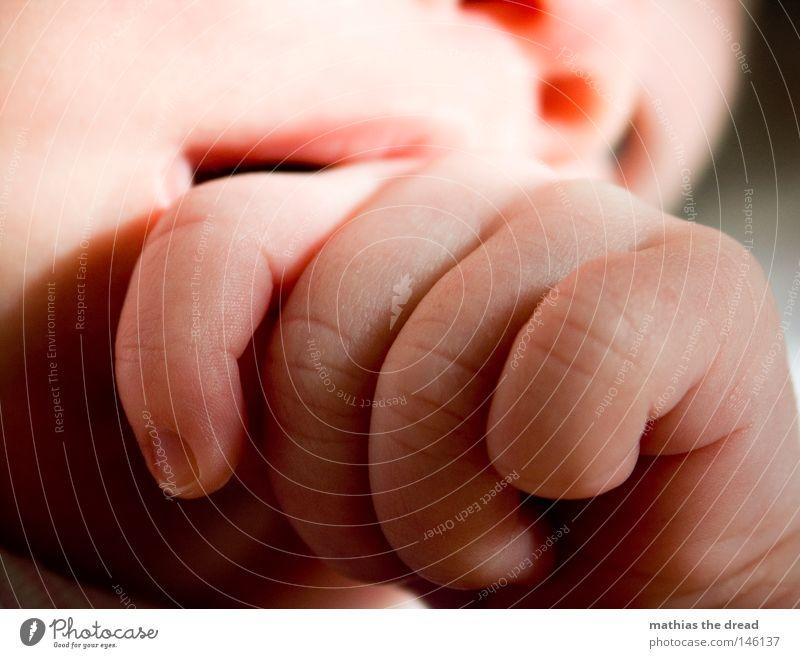 MINI Mensch Kind Hand schön Mädchen Freude ruhig Leben Gefühle Glück Linie Baby Arme Haut groß Finger