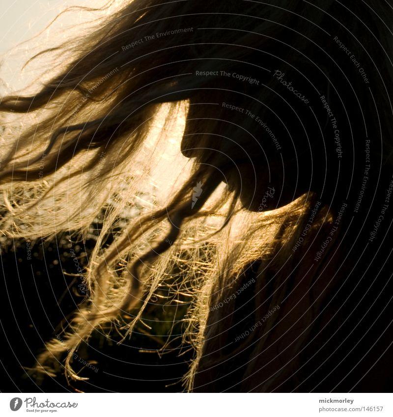 Sonnenkind Sommer Freude Leben Musik Haare & Frisuren Kopf Tanzen Nase Tanzveranstaltung gold Energie Elektrizität Show wild