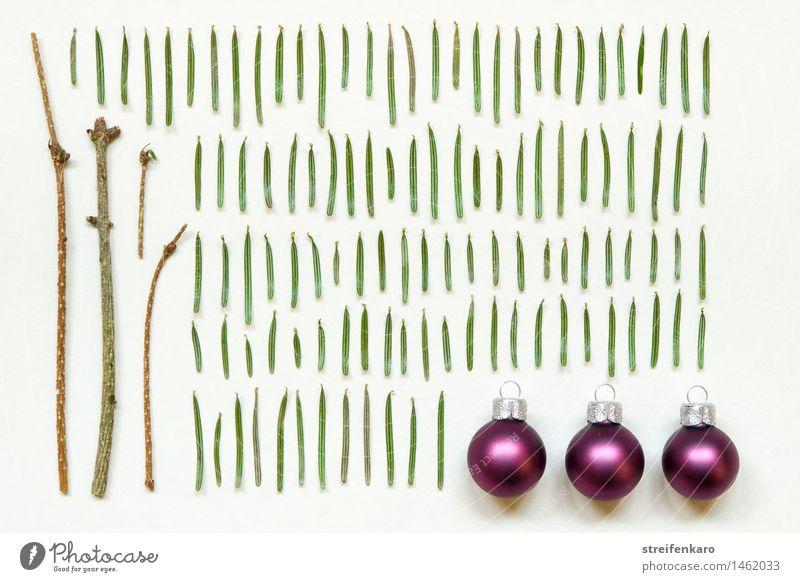 Basisset Weihnachtsdeko Weihnachten & Advent Pflanze grün Winter Holz Feste & Feiern braun Stimmung Wohnung Zufriedenheit Freizeit & Hobby