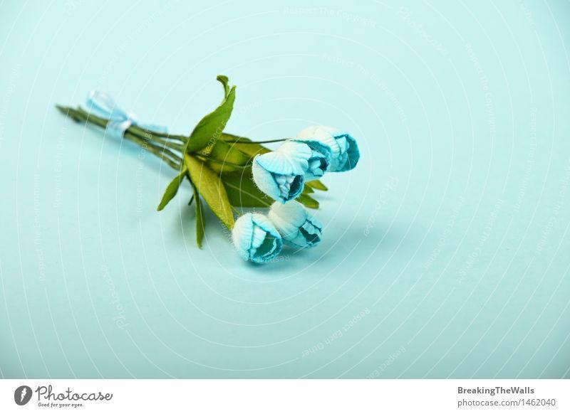 Ein Maulbeerpapier blüht Blumenstrauß auf blauem Hintergrund grün schön weiß Winter Liebe Gefühle natürlich Stil klein Feste & Feiern Stimmung Freizeit & Hobby