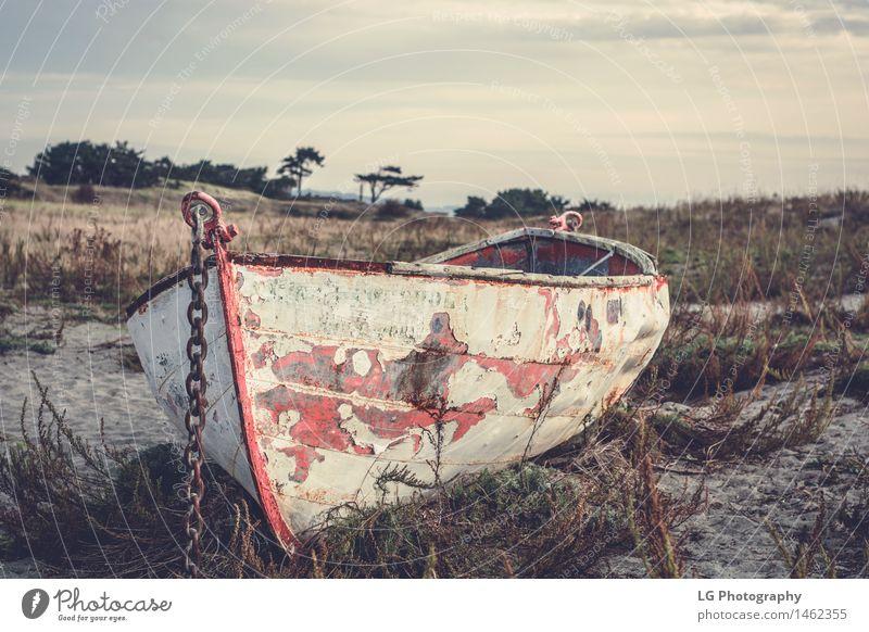 Altes Ruderboot an einem Strand schön Ferien & Urlaub & Reisen Sommer Sonne Meer Landschaft Sand Himmel Wetter Gras Park Wasserfahrzeug Metall alt hell maritim