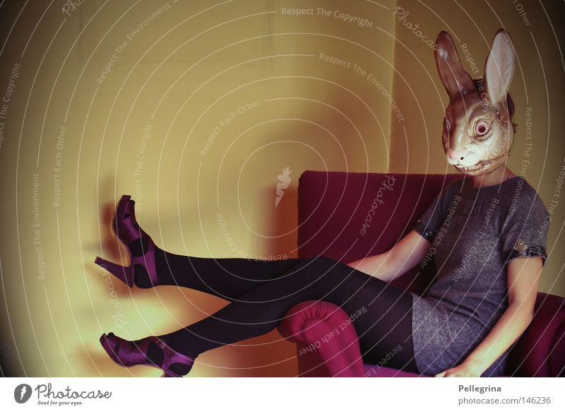 anonym Hase & Kaninchen Tier Sessel Frau Kleid Strümpfe Schuhe Damenschuhe Samt purpur Wohnzimmer Maske Beine Raum Osterhase