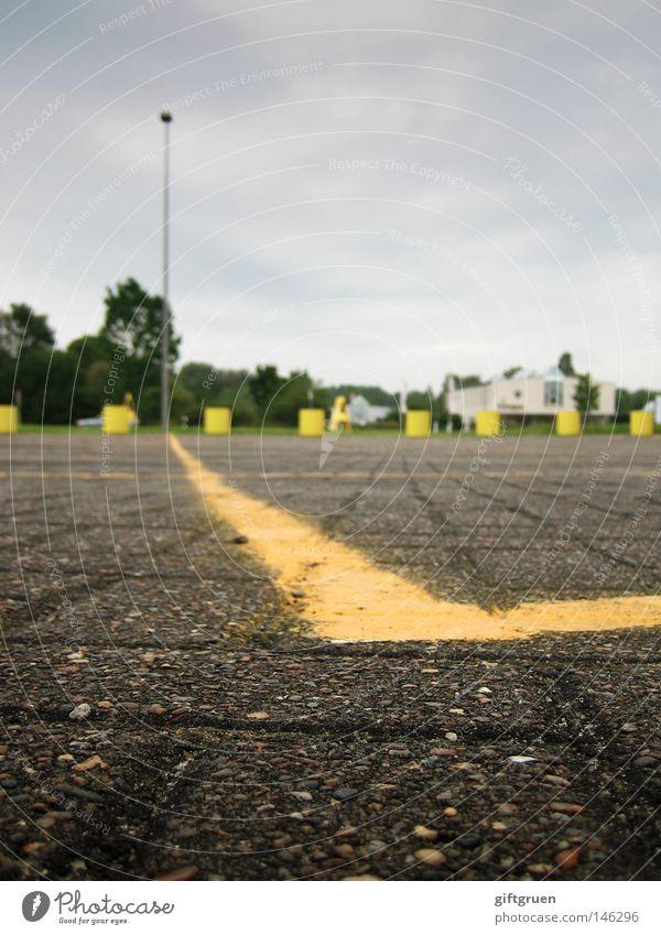rattenperspektive Baum grau Linie Schilder & Markierungen leer Industrie Bodenbelag Laterne Verkehrswege Parkplatz Bodenmarkierung