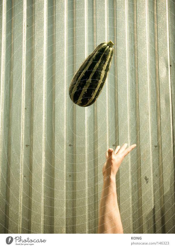 achtung gemüse ! Hand grün fliegen Frucht Luftverkehr fangen Gemüse leicht Schweben werfen Kürbis Vegetarische Ernährung Gurke Zentrifuge Zucchini hochwerfen