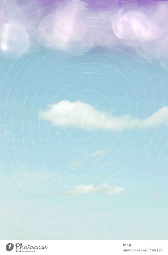 VOGEL IM WASSER | FISCH AM HIMMEL | Himmel blau weiß Wolken Erholung Lampe träumen Horizont Hintergrundbild glänzend Luftverkehr Fisch Dach Pause Punkt Kitsch