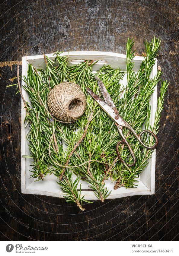 Rosmarin und alte Schere Lebensmittel Kräuter & Gewürze Lifestyle Alternativmedizin Gesunde Ernährung Sommer Garten Tisch Natur Design Stil alternativ