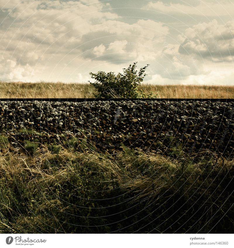 Im Mittelpunkt stehn Himmel Natur Ferien & Urlaub & Reisen Wolken Bewegung Wege & Pfade Stein Linie Verkehr Eisenbahn Sträucher Güterverkehr & Logistik Dorf