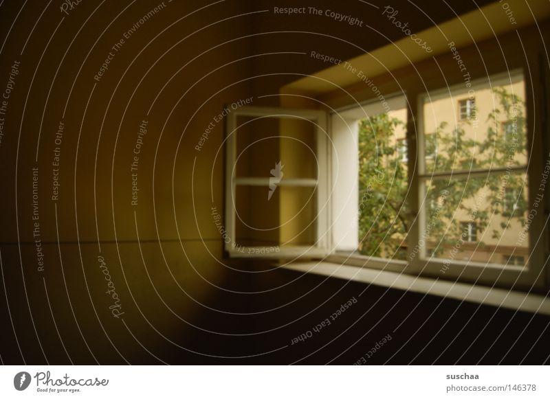 fenster II grün Baum ruhig Haus dunkel Fenster offen Idylle Dorf Gelassenheit Aussicht dumm Treppenhaus Flur klassisch friedlich