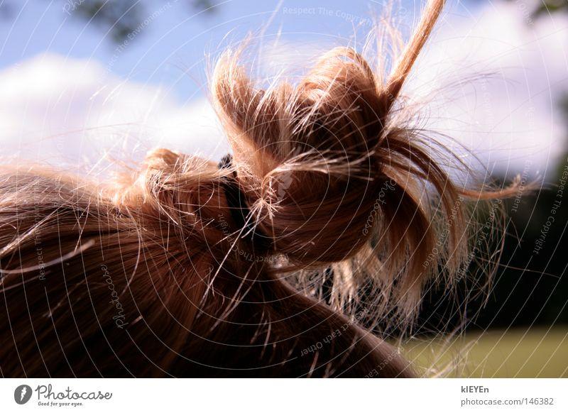 haarig Himmel Freude Erholung Wiese Haare & Frisuren lustig Zufriedenheit blond Zopf Knoten Kamm