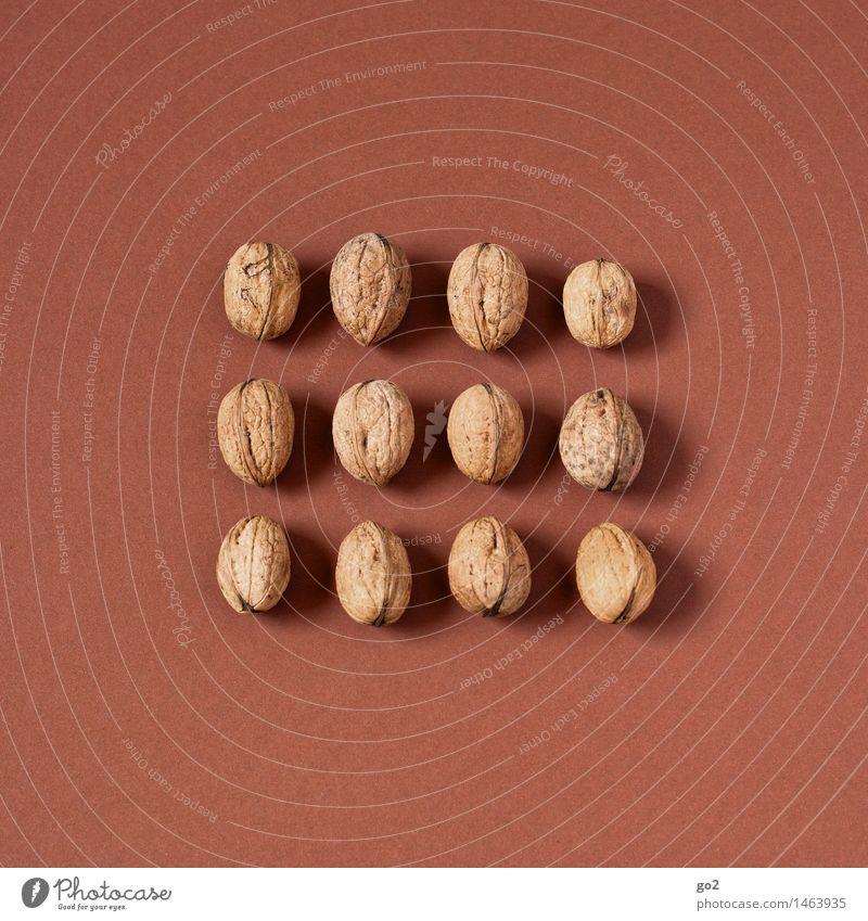 12 Walnüsse Lebensmittel Frucht Walnuss Nuss Ernährung Essen Bioprodukte Vegetarische Ernährung Diät Fasten Gesunde Ernährung Weihnachten & Advent ästhetisch