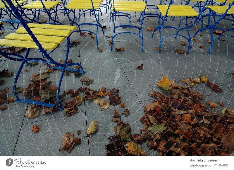 Herbst 7 Blatt gelb Farbe grau Park Stimmung braun Pause Stuhl