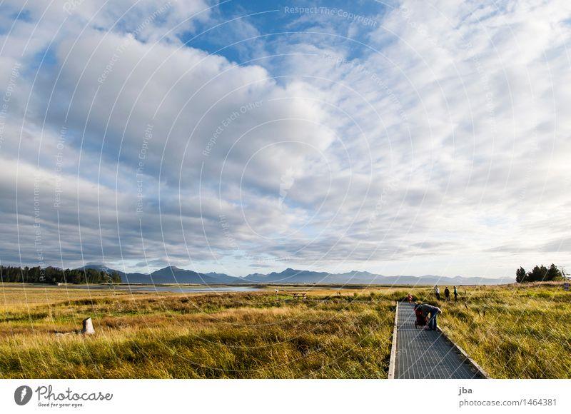Beluga Slough - Alaska 04 Erholung Freizeit & Hobby Ferien & Urlaub & Reisen Ausflug Freiheit Sightseeing wandern Umwelt Natur Landschaft Luft Himmel Wolken