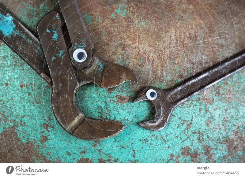 Hilfe!!! Eine große Sanitärzange mit Augen will einen kleineren Schraubenschlüssel verschlingen Beruf Handwerker Arbeitsplatz Dienstleistungsgewerbe Tier Fisch