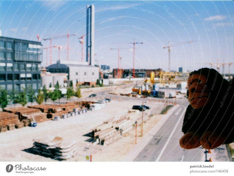 [HH08.3] François toutlemonde Affen Schimpansen Stofftiere Ferien & Urlaub & Reisen skurril absurd hängen Hafencity Haus Kran Sommer planen verrückt dumm