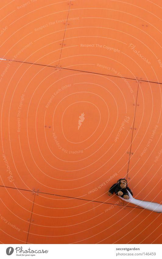 [HH08.03] François' höhenflug Hand Sommer Ferne Farbe dunkel Wand Spielen klein hell orange braun Raum fliegen modern