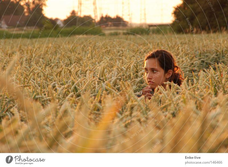 2. Kornmädchen Frau Natur schön Sommer Einsamkeit ruhig Erholung gelb Denken Horizont Feld Zufriedenheit Coolness beobachten geheimnisvoll Getreide