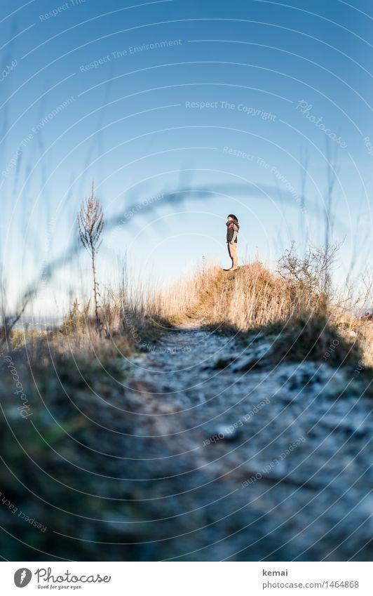 Fool on the hill Mensch Natur Pflanze blau Landschaft Einsamkeit ruhig Tier Ferne Winter Umwelt Wege & Pfade Lifestyle Freiheit oben frisch