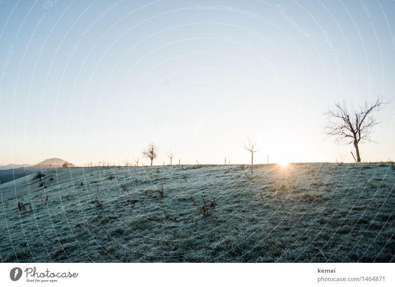 I like to rise when the sun she rises Umwelt Natur Landschaft Wolkenloser Himmel Sonne Sonnenaufgang Sonnenuntergang Sonnenlicht Winter Schönes Wetter Eis Frost